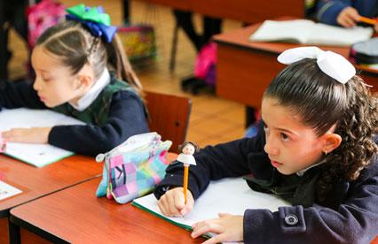 Idiomas impartidos en Primaria - Instituto Lomas del Real